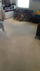 Carpet cleaning in Kensington and Chelsea, W8 area, two bedrooms and hallway