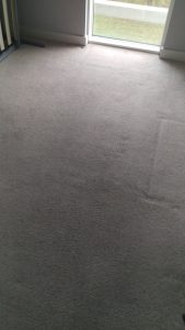 Commercial carpet cleaning in Holland Park, W14 postcode area, London