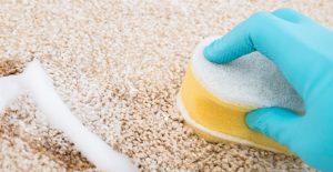 Carpet Cleaners in London - mvir cleaning