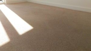 Carpet cleaning in Hackney, E2 postcode area, London