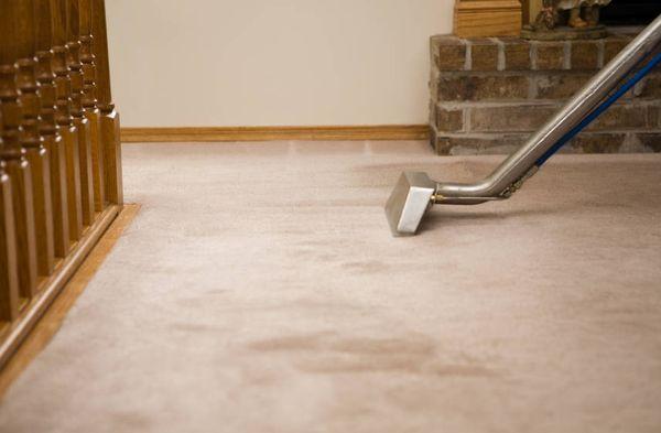 Steam carpet cleaners Kensington