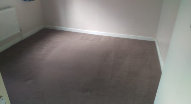 Carpet & Upholstery cleaning in Central London, EC1M postcode area, Camden