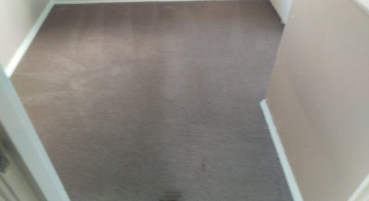 Carpet cleaning in Waltham Forest, E4 postcode area, London