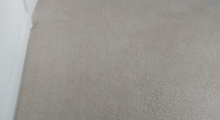 Carpet cleaning in Dulwich, SE21 postcode area, South East London