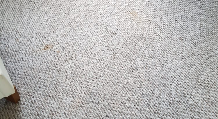 Carpet cleaning in Camberwell, SE5 postcode area,London