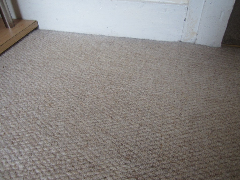 Gallery Steam Extraction Carpet Cleaning In London