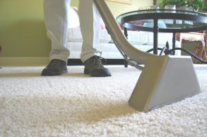Carpet Cleaning Kingston