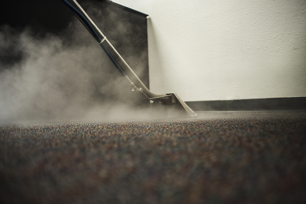 Steam Carpet Cleaning - cleaning company