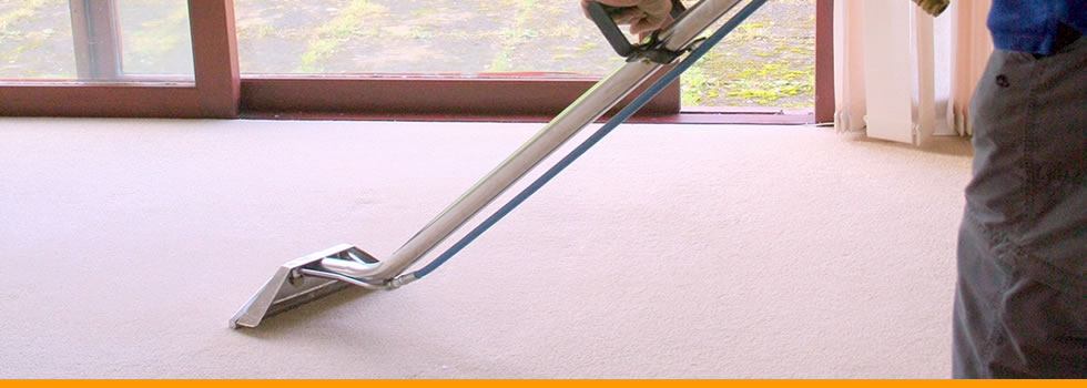 Carpet Stain Removal - we are pro