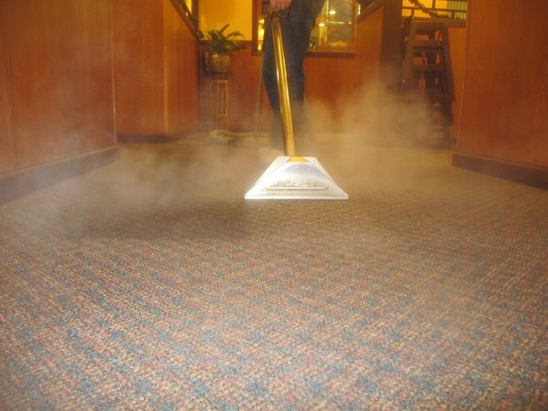 steam carpet cleaners Chelsea