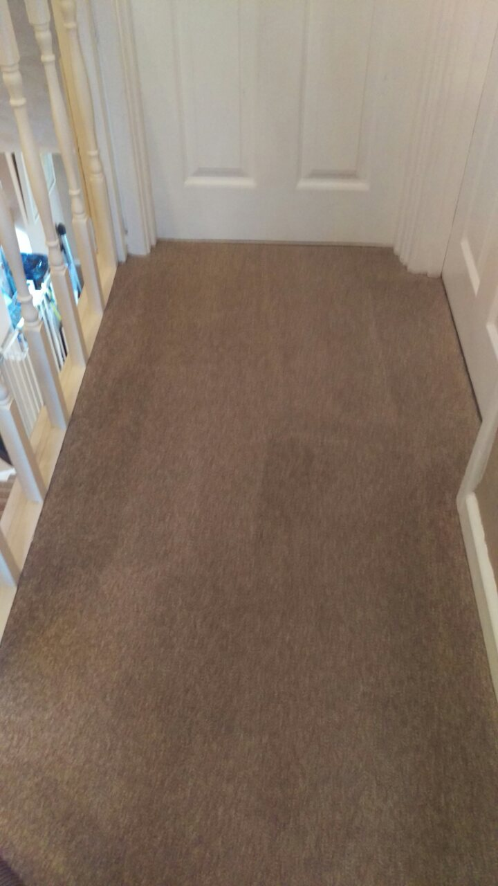 Carpet Cleaning On Toilet Landing Flight Of Stairs And