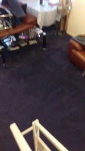 https://mvir-cleaning.co.uk/news/steam-carpet-cleaning-living-room-stairs-se11-area-kennington-london-borough-southwark/