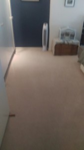 Carpet cleaning on bedroom and baby room with milk spots in N7 area, Holloway, Barnsbury, Islington, London