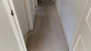Carpet cleaning in Lambeth, SW12 postcode area, London