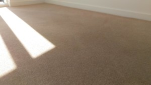 Carpet cleaning in Hackney, E2 postcode area, London