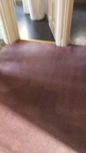 Carpet cleaning in Beckenham, BR3 postcode area, Bromley, London