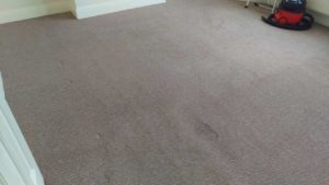 Carpet cleaning in Orpington, BR5 postcode area, London