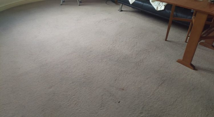 Carpet cleaning in CR7 postcode area, Thornton Heath, London