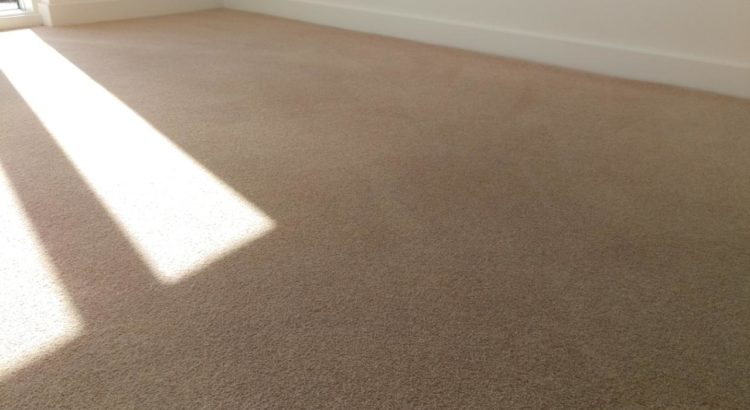 Carpet cleaning in Wandsworth Common, SW12 postcode area, London