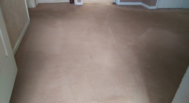 Carpet & upholstery cleaning in Kennington, SE11 postcode area, London