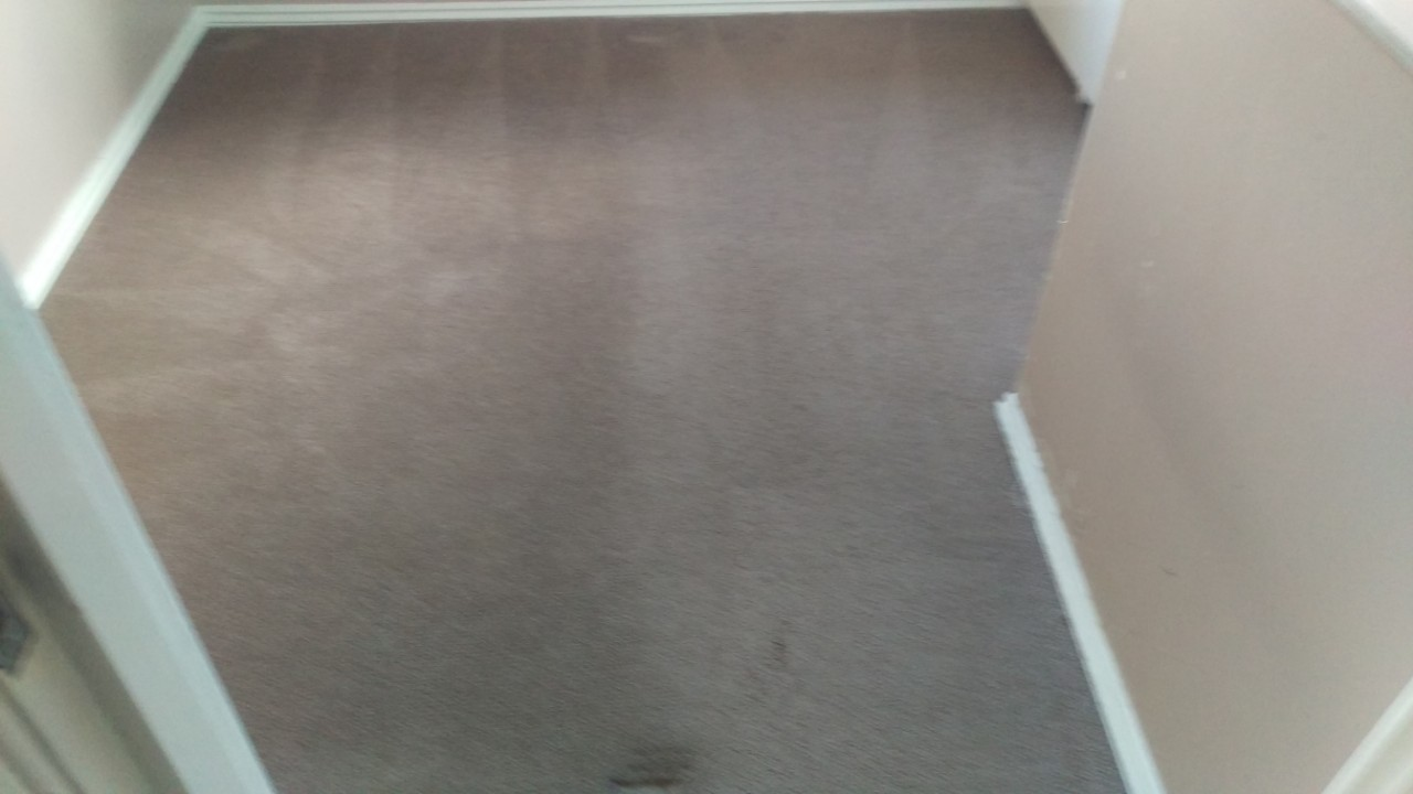 Carpet Cleaning In Waltham Forest E4 Postcode Area