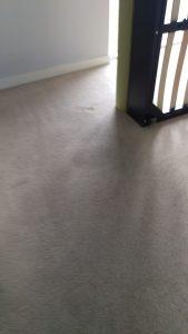 Carpet cleaning in Beddington, CR0 postcode area, London