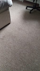 Carpet cleaning Services in Anerley, SE20 postcode area, London