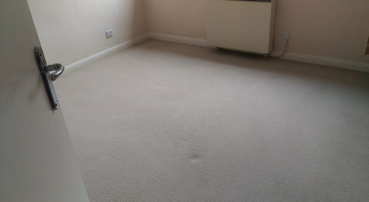 Professional carpet cleaning in Chaldon, CR3 postcode area, London