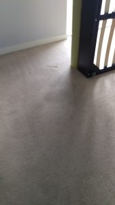 Carpet cleaning in Bromley, BR6 postcode area, Orpington, South London