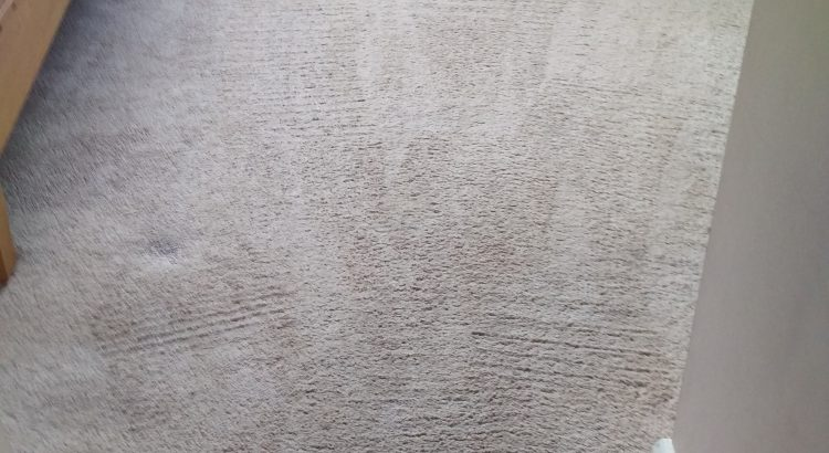 Carpet cleaning in Merton, CR4 postcode area, Mitcham Common, London