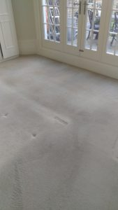 Carpet cleaning in Southwark,SE24 postcode area, Herne Hill,London