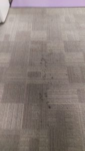Carpet cleaning in SW18 postcode area, Wandsworth, London