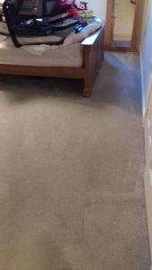 Carpet cleaning in SE20 postcode area, Anerley, London