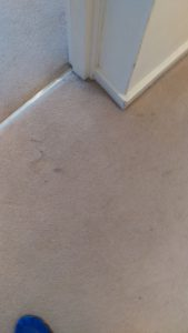 Carpet cleaning in SE3 postcode area, Westcombe Park, London