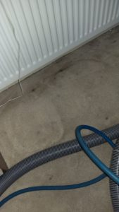 Carpet cleaning in Richmond upon Thames, TW12 postcode area, Hampton