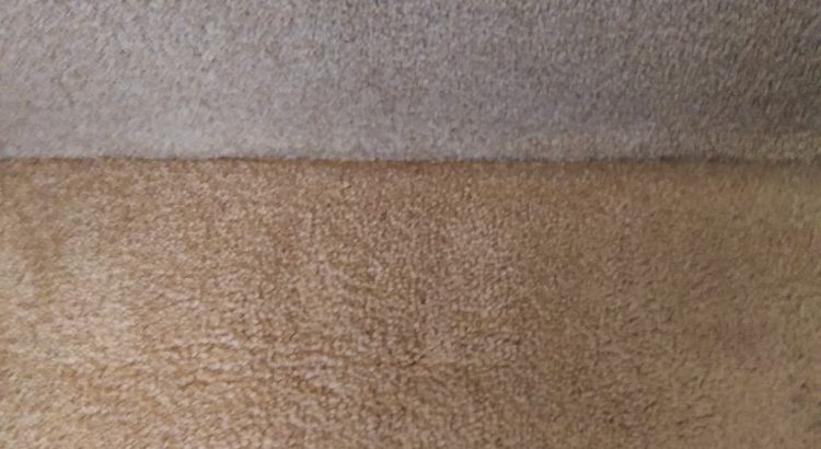 Carpet Cleaning In Camden N19 Postcode Area London