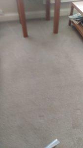 Carpet cleaning in  Wimbledon, SW19 postcode area, London