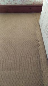 Carpet cleaning in Kingston upon Thames, KT4 postcode area, Worcester Park