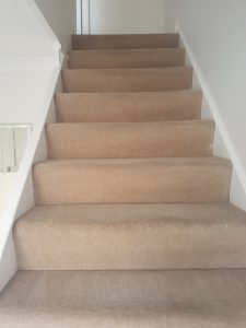 Carpet cleaning in Dorking, Mole Valley, RH4 postcode area
