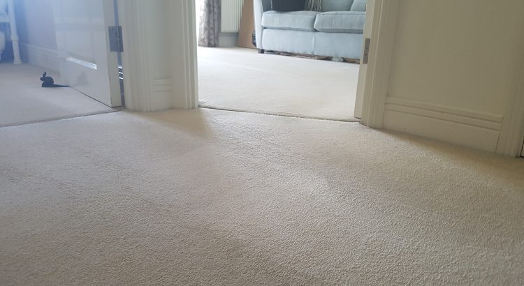 Carpet & Upholstery cleaning in Deptford, Southwark, SE8 postcode area