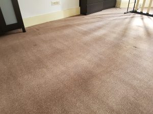 Carpet cleaning in Sevenoaks, Cudham, TN14 postcode area