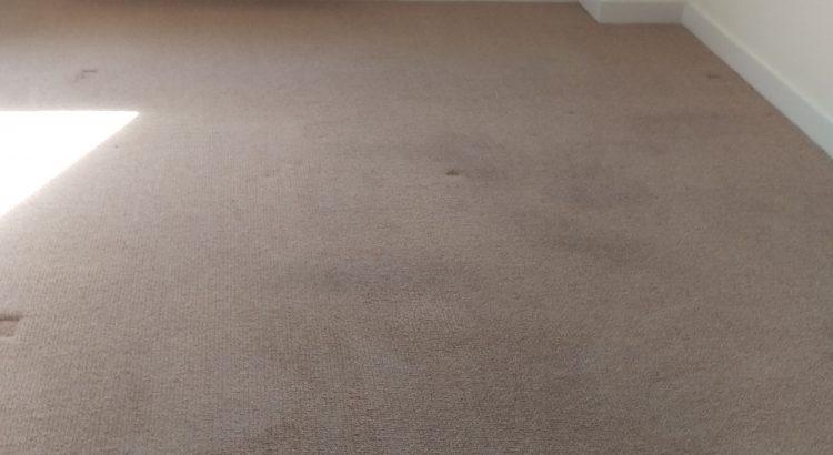 Carpet cleaning in Ealing, W13 postcode area,London