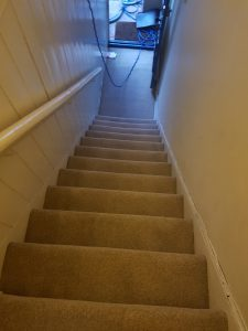 Carpet cleaning in Tandridge, RH7 postcode area, Lingfield