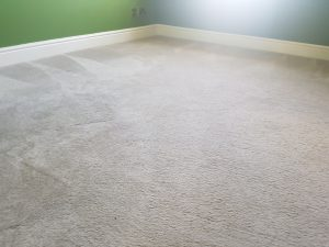 Carpet cleaning in Reigate, Mole Valley ,RH2 postcode area