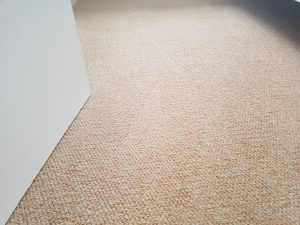 Carpet cleaning in Hackney Central, E8 postcode area