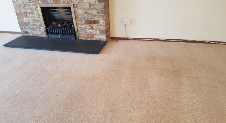 Carpet cleaning in Selsdon, CR2 postcode area, South Croydon