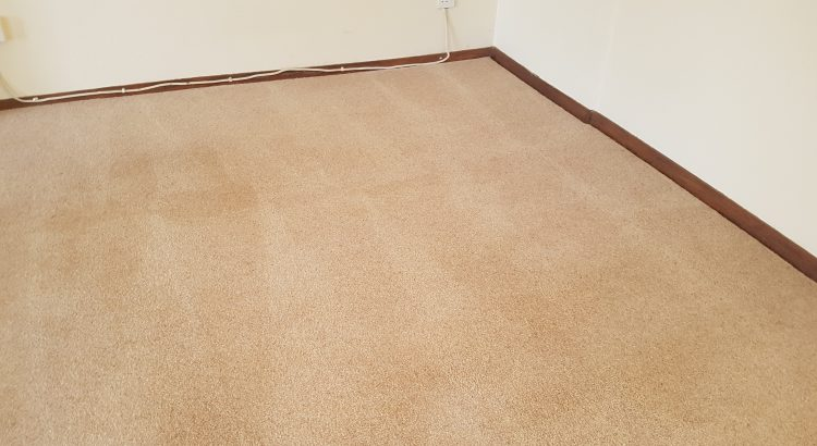 Carpet cleaning in Purley, CR8 postcode area, Sutton
