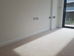 Carpet cleaning in TN11 postcode area , Penhurst