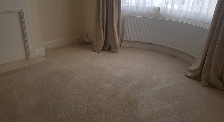 Carpet cleaning in RH3 postcode area, Betchowrth, Mole Valley