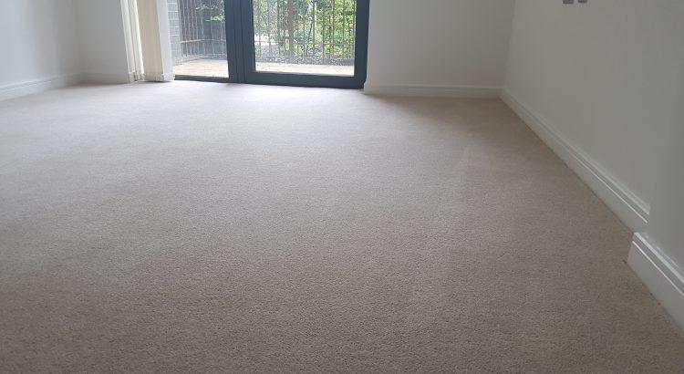 Carpet cleaning in Blackheath, SE3 postcode area, Greenwich, London